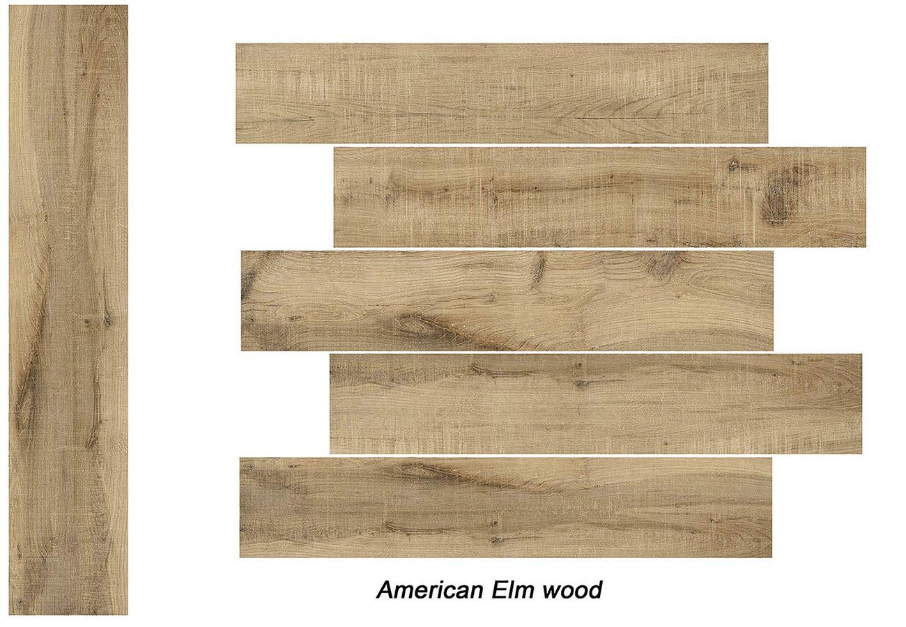 American Elm Wood
