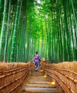 Nhật Bản 4N3Đ: Kansai - Nara - Kyoto - Arashiyama - Osaka (Mùng 3, 5)