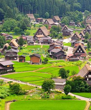NAGOYA-SHIRAKAWAGO-TAKAYAMA-MATSUMOTO-KAWAGUCHIKO-FUJI-TOKYO