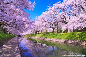 [DU LỊCH NHẬT BẢN] NAGOYA - SHIRAKAWAGO - TAKAYAMA - MATSUMOTO - ISAWACHO - FUJI - TOKYO