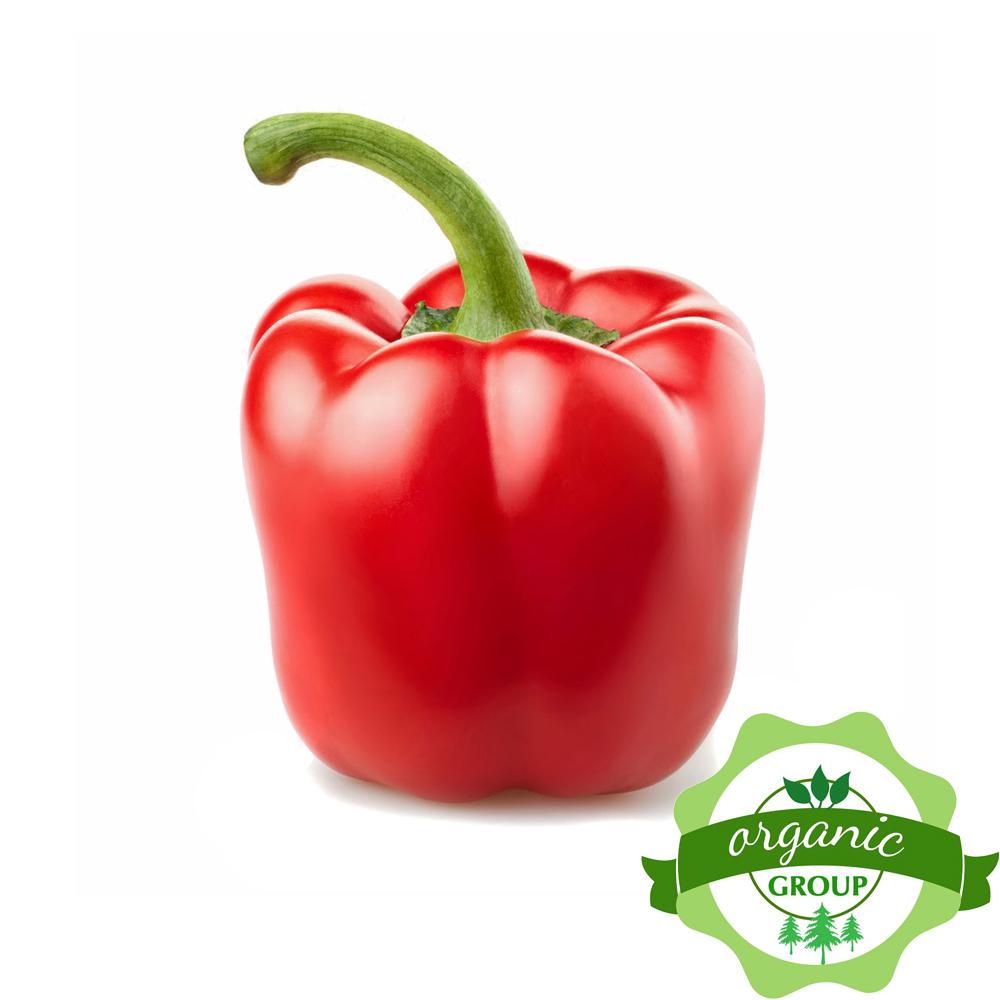 Ớt chuông đỏ Hà Lan Organic