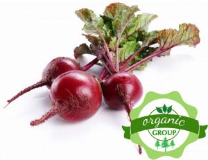 Củ dền Nhật Organic