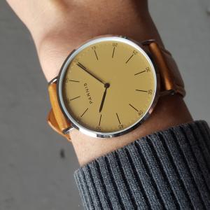 Đồng hồ đôi PA1