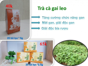 Trà Cà Gai Leo Thái Hưng hộp 25 túi lọc 2.5 gam