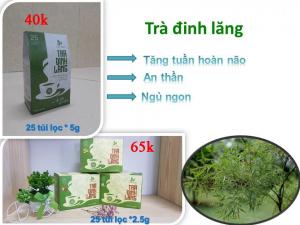 Trà đinh lăng Thái Hưng hộp 25 túi lọc 2.5 gam cao cấp