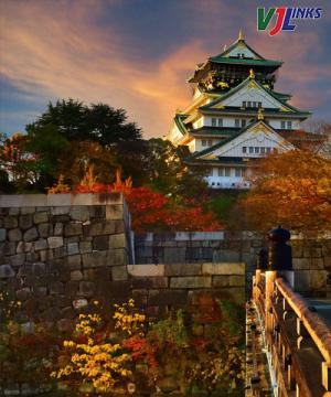 Tokyo - Osaka - Universal - Kyoto - Yamanashi 6N5Đ