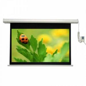 Màn chiếu điện điều khiển từ xa Dalite 120 inches (84''x84'')