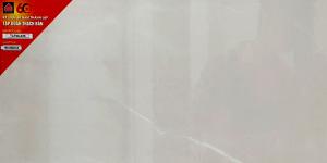 Gạch ốp lát 30x60 TLP 36 - 11