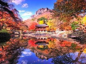 Mùa Thu Nhật Bản