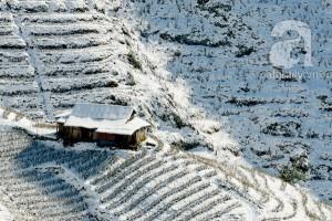 Sapa Mùa Tuyết Phủ