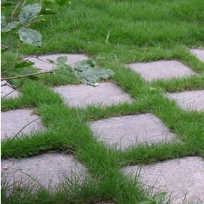 Đá tự nhiên lát sân vườn 13
