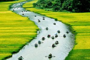 Thiên nhiên quê hương Việt Nam